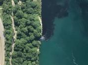 Ниагарский водопад почернел от сточных вод