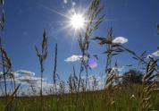 Синоптики пообещали жителям Армении хорошую погоду на выходные
