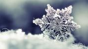 Ջերմաստիճանը մարտի 1-3-ն աստիճանաբար կնվազի 8-10 աստիճանով