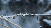 Առաջիկա օրերին եղանակը ցրտելու է 12-15 աստիճանով