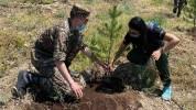 Օտարերկրացի ապագա բժիշկները 100 +33 ծառ տնկեցին «Եռաբլուր» զինվորական պանթեոնում (լուսանկա...