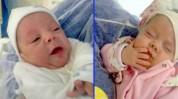 Գյումրու մանկատան բակում հայտնաբերված նորածինների մայրը հրաժարվել է երեխաներից