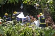 Պորտուգալիայում հսկայական կաղնին ընկել է մարդկանց վրա` խլելով 13 մարդու կյանք (տեսանյութ)