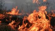 Հրդեհ Սյունիքի մարզում․ այրվել է մոտ 30 հա խոտածածկույթ