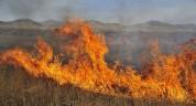 Հրդեհ Սարալանջ գյուղի մոտակայքում․ այրվել է մոտ 3 հա բուսածածկույթ