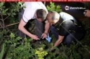 Երևանում կրակոցներ են հնչել. կան վիրավորներ