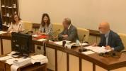 Իտալիայում ՀՀ դեսպանը Իտալիայի Սենատի Արտաքին հարաբերությունների հանձնաժողովում ներկայացրե...