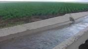 Արզնի-Շամիրամ ջրանցքում 85-ամյա քաղաքացու դի է հայտնաբերվել. ԱԻՆ