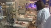 Պատվաստումների միջոցով հնարավոր կլինի կանխել COVID-19-ի ռիսկի խմբում գտնվող հղիների շրջանո...