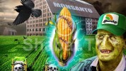 Գյուղնախարարությունն ուսումնասիրում է Monsanto ընկերության գործունեությունը. նախարար