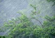 «Երևանում և հանրապետության մյուս հատվածներում նման ուժեղ քամիներ չեն կանխատեսվում»