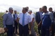 Հայաստանից պտուղ-բանջարեղենի արտահանման աշխարհագրությունն ընդլայնվում է