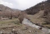 Գերմանիայի բնության պահպանության միության մասնաճյուղը Հայաստանում սկսում է «Մաքուր ափ, մաք...