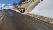 Վարդենյաց լեռնանցքը կցորդիչով տրանսպորտային միջոցների համար դժվարանցանելի է