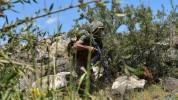 Զորամասերից մեկի հատուկ նշանակության ստորաբաժանման զինծառայողներն անցկացրել են մարտավարակա...