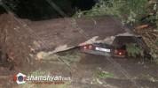 Արմավիրի մարզում ուժեղ քամին և պտտահողմը տապալել են հաստաբուն ծառեր, էլեկտրասյուներ
