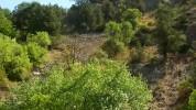 Չարաշահումներ են բացահայտվել «Խոսրովի արգելոց» ՊՈԱԿ-ում (տեսանյութ)