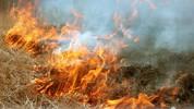 Մարալիկում մոտ 40 հա խոտածածկույթ է այրվել